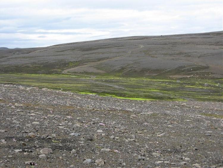 Name:  Island 2007-1 038-Grontisteinorken.jpg Views: 6695 Size:  86.8 KB