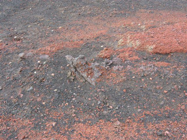 Name:  Island 2007-1 199-Fine farger på Lavasteinen.JPG Views: 5766 Size:  95.7 KB